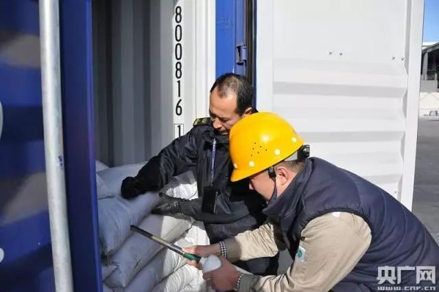 惊!国内最大箱量危险货物谎报案件被查处!涉及56个货柜