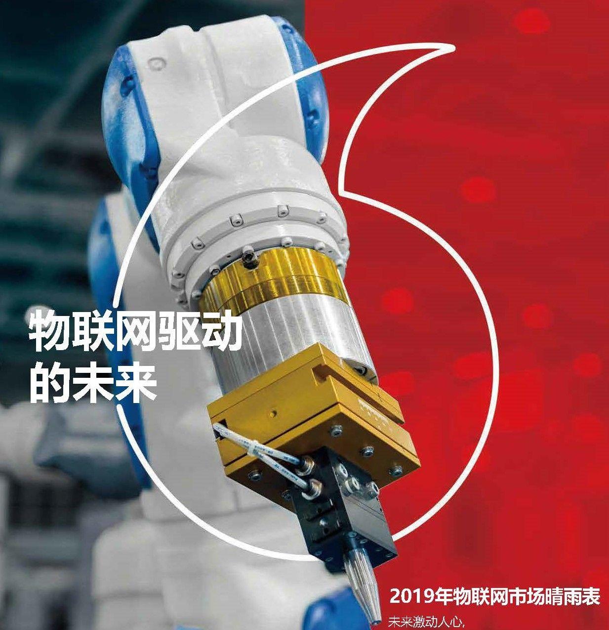 2019年物联网市场晴雨表(PDF下载)
