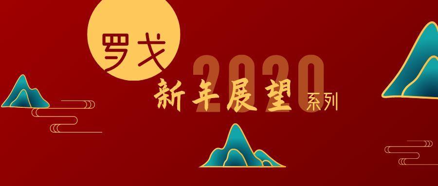 罗辉林 淘汰与求生:物流 2019到2020