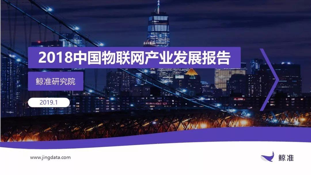 2018中国物联网产业发展报告