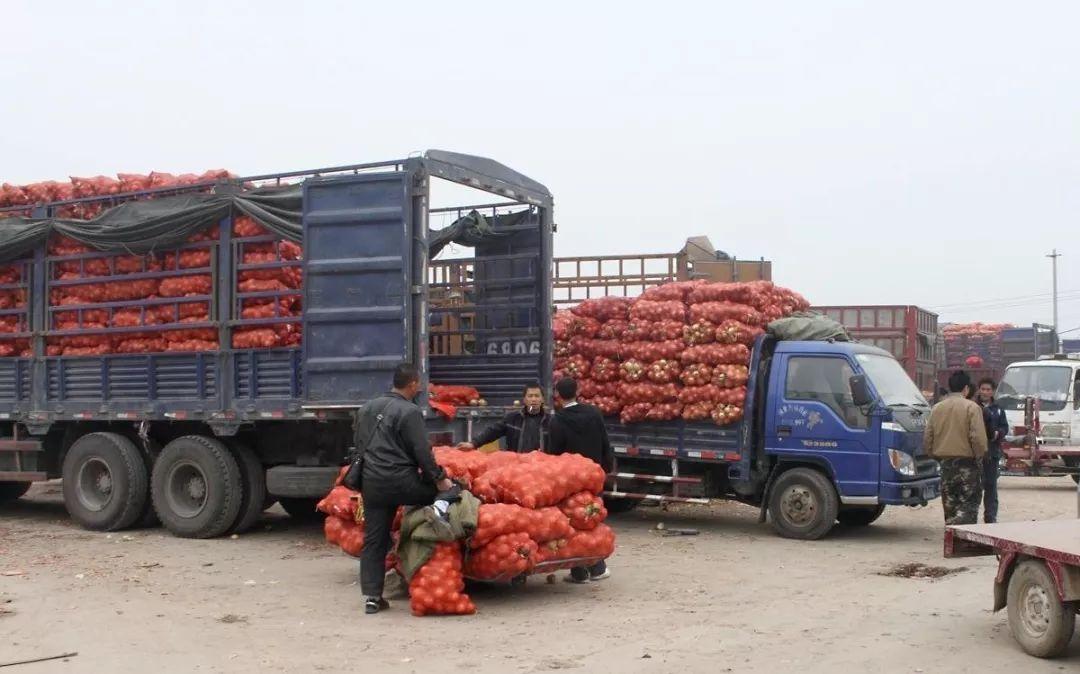 冷链运输要注意了,新修食品安全法实施条例下月起实施!