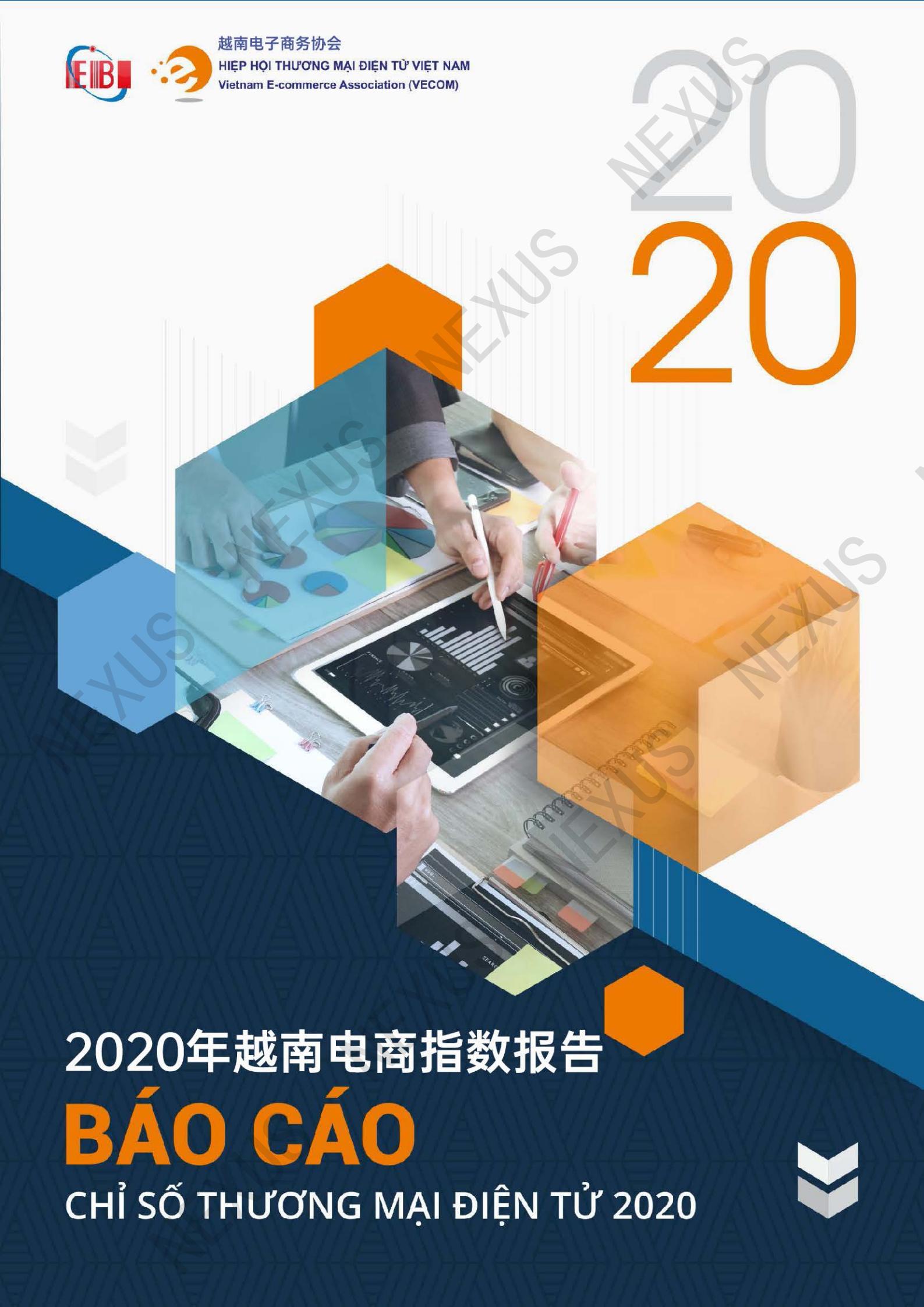 越南2020年电商指数电子报告(中文版)