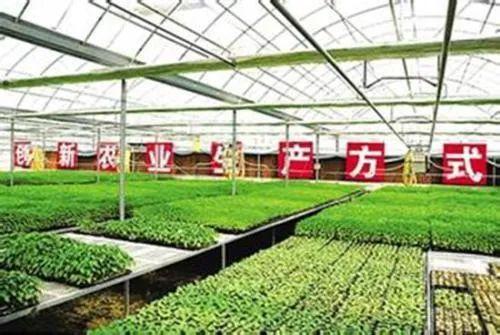 丰农科技——新型农业产业链赋能者